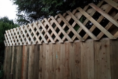 Closeboard fence + diamond trellis, Crosskeys, Newport